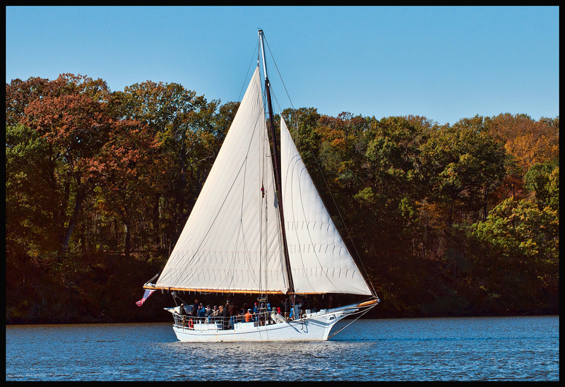 """""""The Sigsbee is a Chesapeake Bay skipjack, built in 1901 at Deal Island, Maryland. She is a 47-foot-long (14 m) two-sail bateau, or """"V""""-bottomed deadrise type of centerboard sloop. She has a beam of 15.8 feet (4.8 m), a depth of 3.8 feet (1.2 m), and a gross registered tonnage of 8 tons. She is one of the 35 surviving traditional Chesapeake Bay skipjacks and a member of the last commercial sailing fleet in the United States. She is located at Tilghman, Talbot County, Maryland. -- I believe she is now at the Inner Harbor - LIVING CLASSROOMS FOUNDATIONS, INC. """"<br /> <br />  This photograph was taken at the Sultana Down Rigging in 2011 at Chestertown, Maryland by Curtis Brandt."""