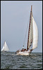 Skipjack Martha Lewis 2005<br /> Cambridge, MD skipjack races