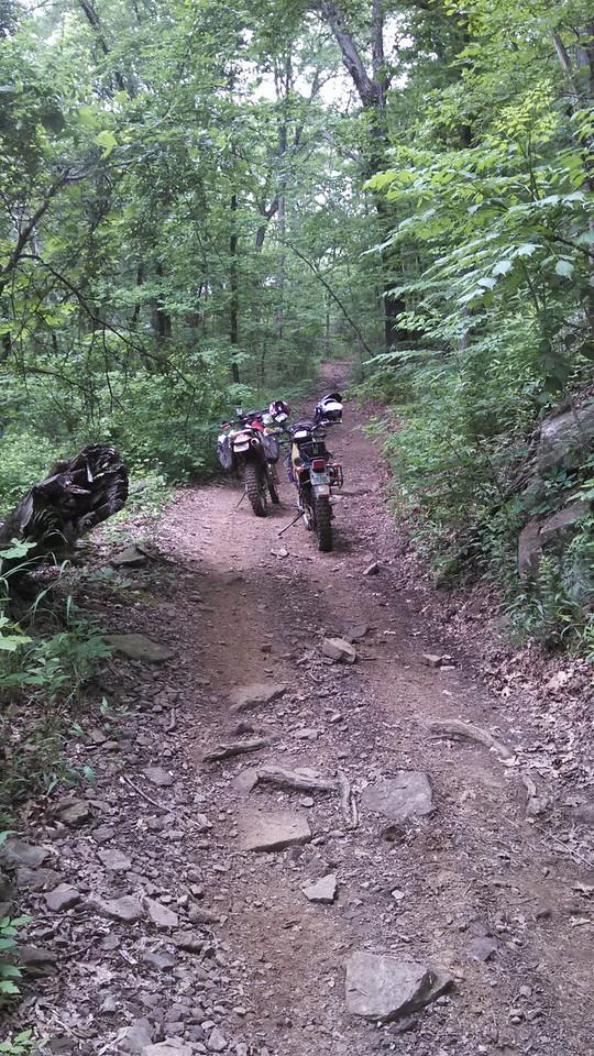 Bigger Falls Trail