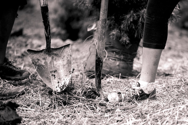 SOS_Tree_planting_GOPRO_VAIL