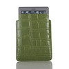 Kindle_GreenCroc_w_kindle_Highres