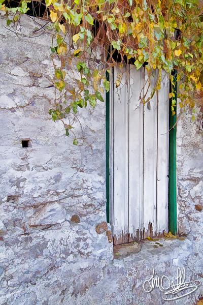 Old root cellar door