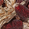 Dried Ornamental Strawberry Corn