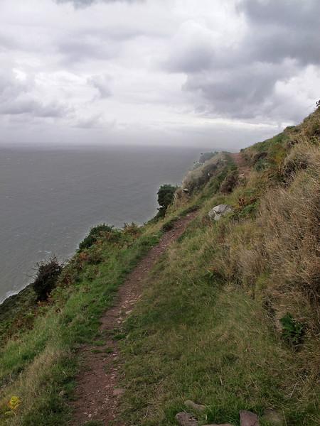 The path passes Furzebury Break.