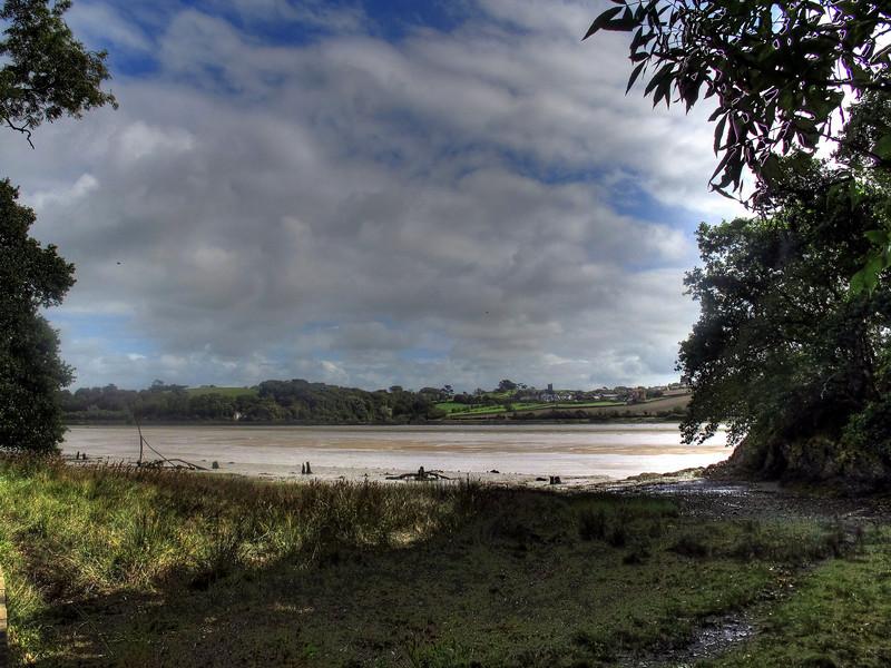 Along the Torridge bank towards Appledore.