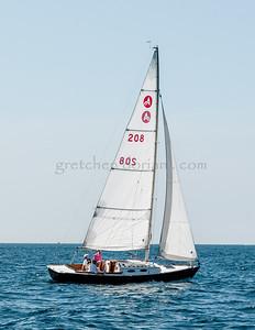 Alerion 208