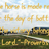 """The horse is made ready for the day of battle,<br />     but the victory belongs to the Lord.-Proverbs 21<br /> <br /> <a href=""""https://www.bible.com/bible/314/PRO.21.TLV"""">https://www.bible.com/bible/314/PRO.21.TLV</a><br /> <br /> <br /> <a href=""""https://goodnewseverybodycom.wordpress.com/2015/07/17/neutral-perspective-war-is-evil-and-good/"""">https://goodnewseverybodycom.wordpress.com/2015/07/17/neutral-perspective-war-is-evil-and-good/</a><br /> <br /> <a href=""""https://salphotobiz.smugmug.com/Airplanes/Ellsworth-Airforce-Base-Museum/i-LR8f9C3"""">https://salphotobiz.smugmug.com/Airplanes/Ellsworth-Airforce-Base-Museum/i-LR8f9C3</a>"""