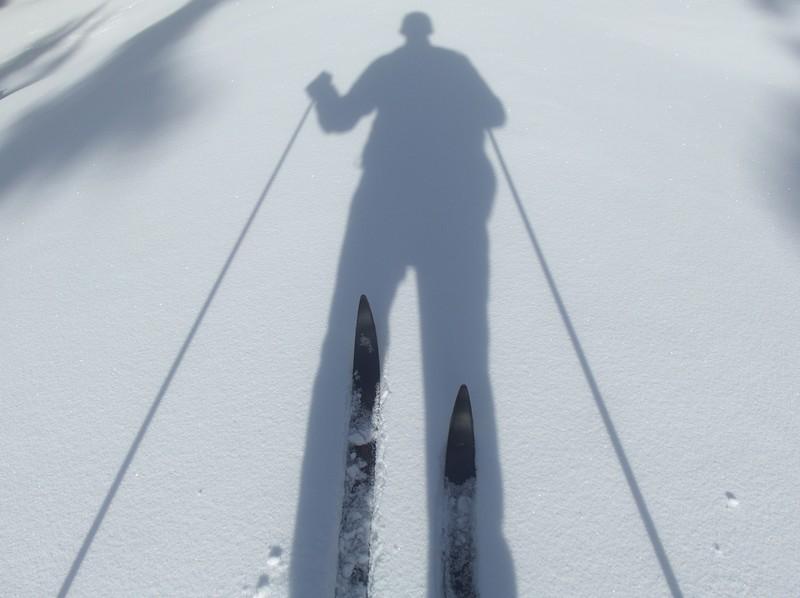 Following my shadow.