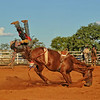 Collinsville Rodeo