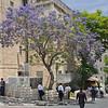 men outside Mir Yeshiva in Mea Shearim