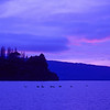 Lake Tarawera dawn