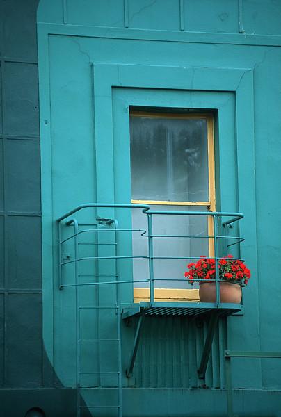 Dunedin window