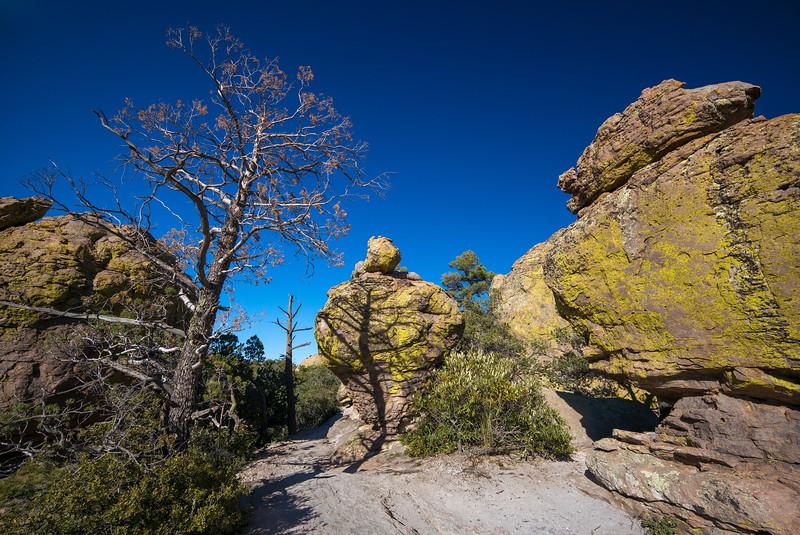 color shape & shadow Chiricahua
