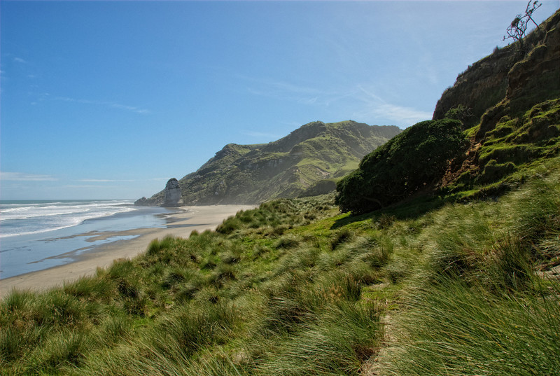 Riley's Beach, Kaihoka, New Zealand