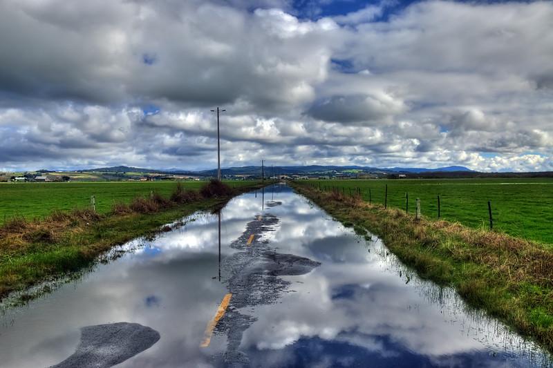 Waterlogged Road, Loleta, CA