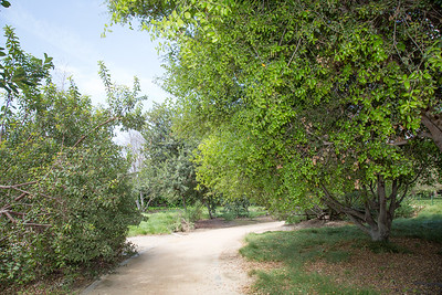 West San Gabriel River Parkway Nature Trail - Phase 2