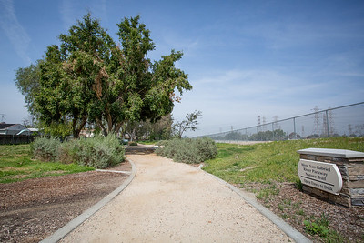 West San Gabriel River Parkway Nature Trail - Phase 3
