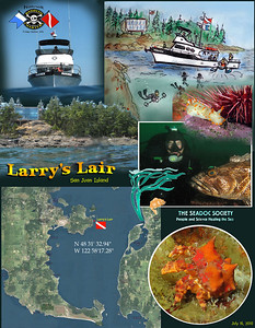Dive aboard Naknek Charter with members of the Seadoc Society. Larry's Lair, San Juan Island. July 16, 2010