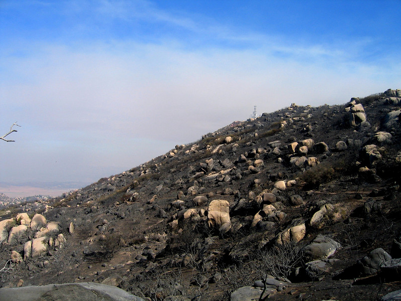 Burnt side of Mt Woodson.