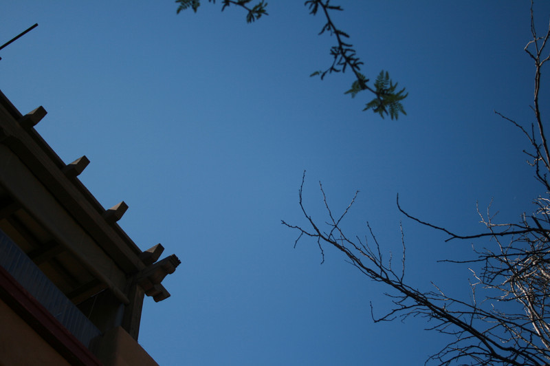 The first picture we took....Blue sky.