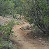 The Audubon Trail we hiked.