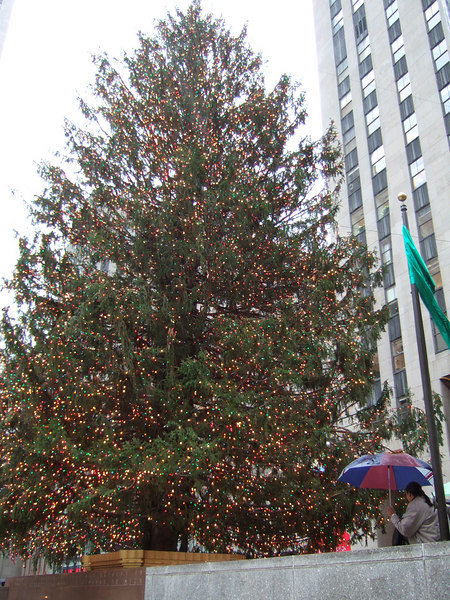 The Rockefeller tree.