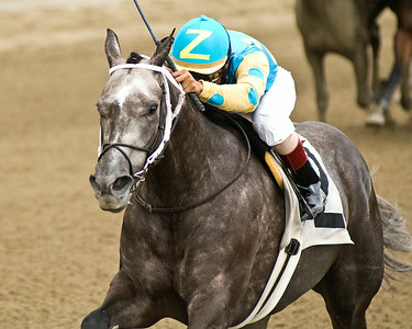Shaun Bridgmohan rides Ash Zee to victory during the 7th race Sunday at the Saratoga Race course. Photo Eric Jenks 9/5/10