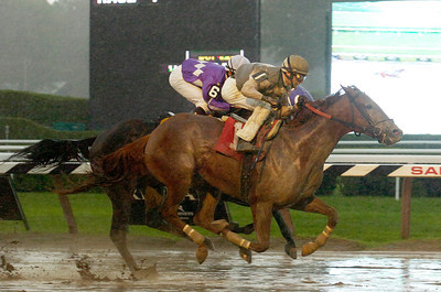 Johnny Velazquez atop Ambassador Bridge won the 7th race on Monday at the Saratoga Race Course. Photo Erica Miller 9/5/11 spt_7thRace_Tues