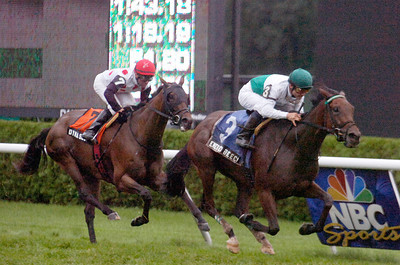 Emerald Beech ridden by Alex Solis won the Glens Falls Grade III on Monday at the Saratoga Race Course. Photo Erica Miller 9/5/11 spt_GlensFalls1_Tues