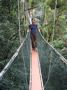 juliet on the canopy walk at mulu national park