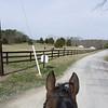 Sasha Riding Buddy-1040776