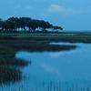 Skidaway Isand marsh