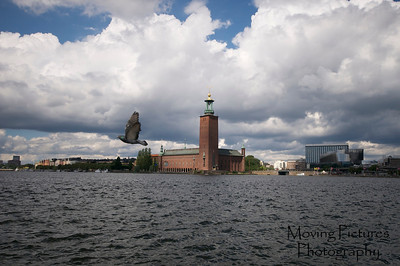 Stockholm - City Hall