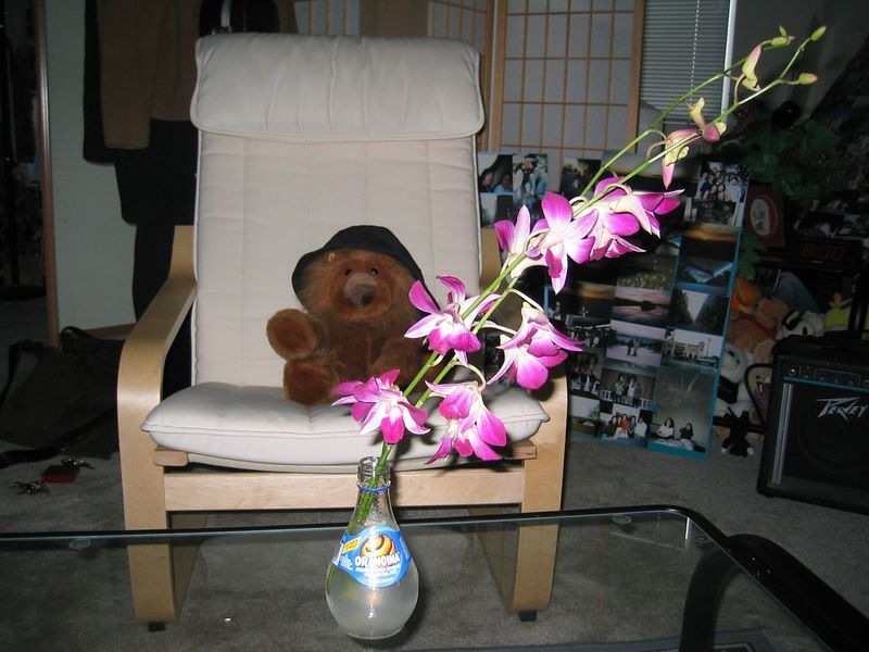 2003 10 18 Saturday - The Lion, the Orangina, & the Orchid with flash