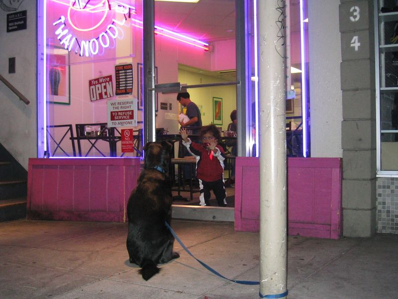 2004 09 19 Sunday - Anxious doggy and amazed kiddie 2 outside Thai Noodle on Shattuck Ave