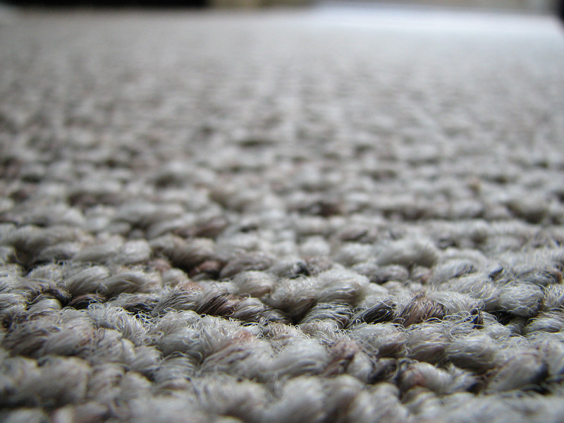 2006 09 15 Fri - Allen Hsiao's carpet texture 3