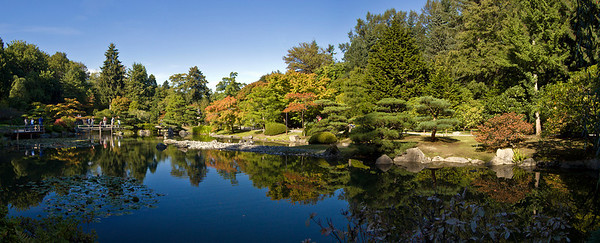 Japnese Garden at Washington Park Arboretum