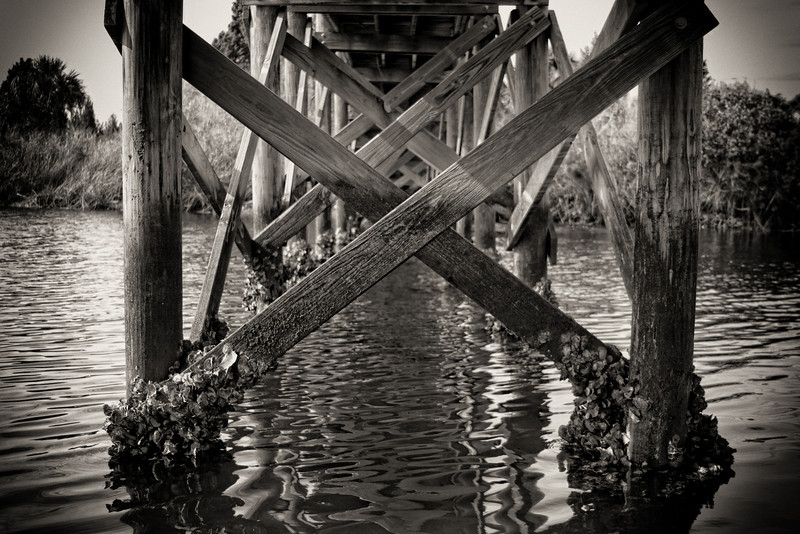 Oyster encrusted bridge, Weeki Wachee, Florida. Taken January 2010, processed using Lightroom and Silver Effects Pro software.