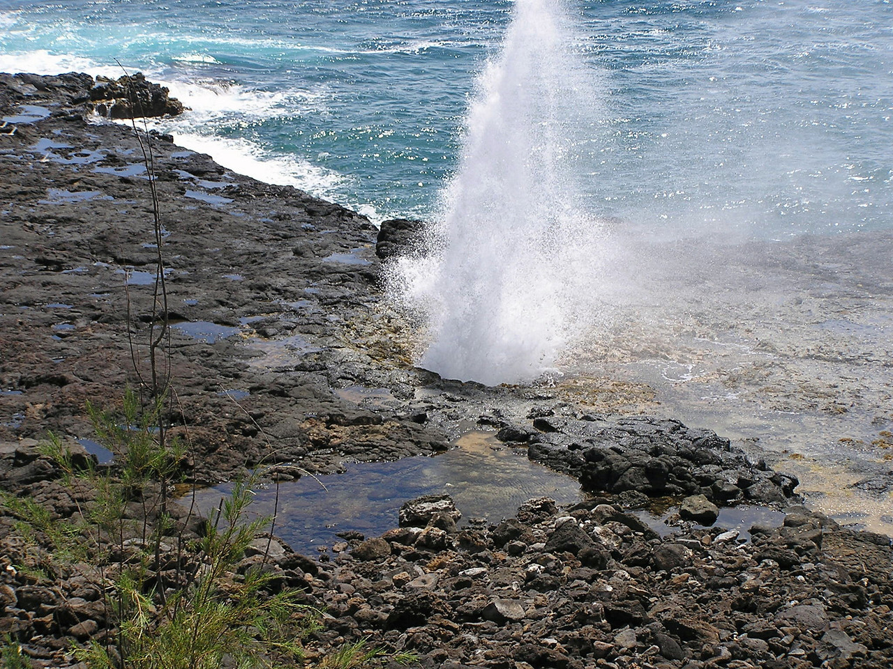 Hawaiian Blow Hole