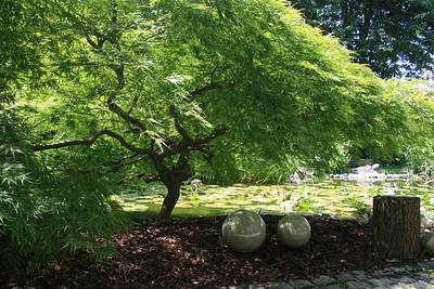 Scheidecker Ring 3 Garden 2012