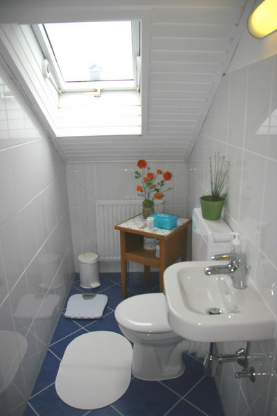 Upstairs toilet - again, watch the head!