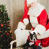 Scheumer Santa Portraits-5