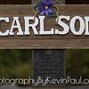 Schmidlin_Carlson_Wedding-2