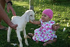 We couldn't find Lilly a Easter Bunny, but we did visit the baby goat next door.