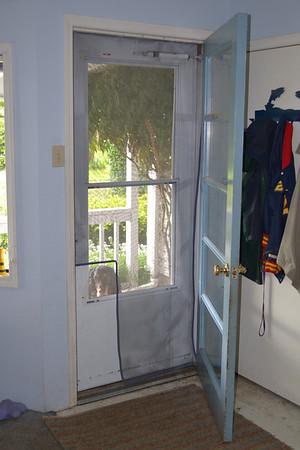 Screen Door Photos
