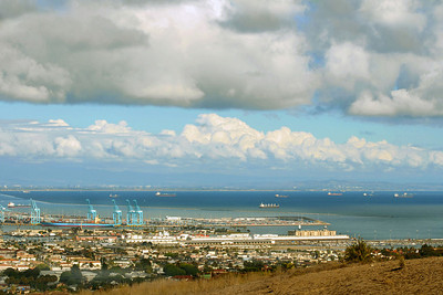 Harbor view San Pedro from PV hill - so clear - all the way to Dana Point