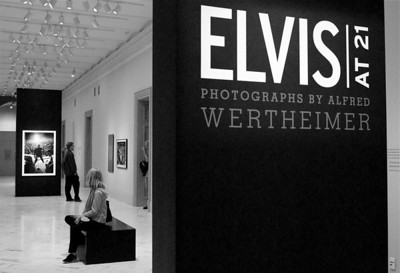 Wertheimer Exhibit. Washington, DC. 2010