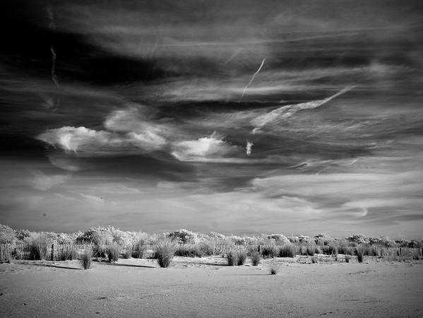 Cape May Infrared No. 5