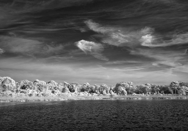 Cape May Infrared No. 1
