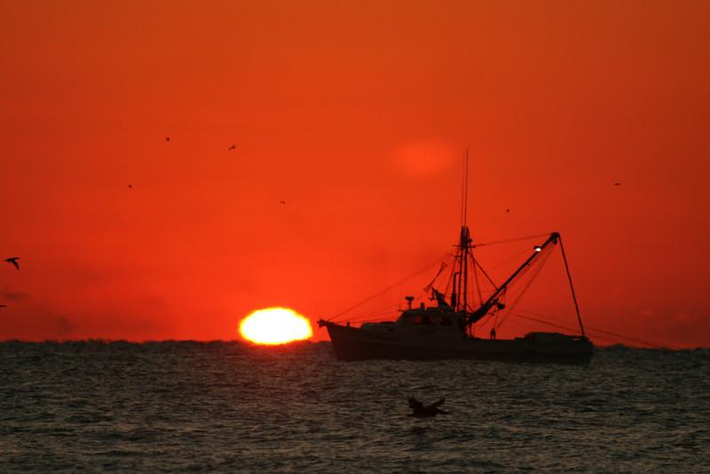 """Sunrise Trawler 2"""